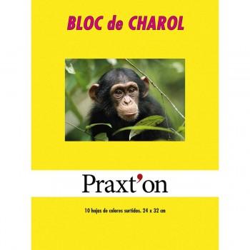 Papel Charol PRAXTON, Bloc x10 Hojas Surtidas