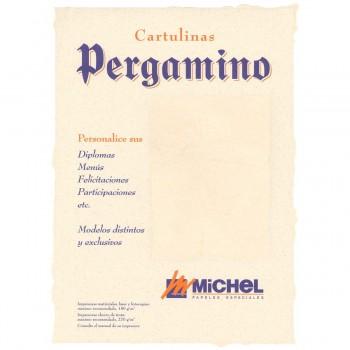 Papel Pergamino MICHEL Din-A4 125 gr. Piel Elefante, Pack x25 Hojas